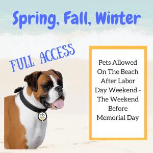 Virginia Beach Dog Rules